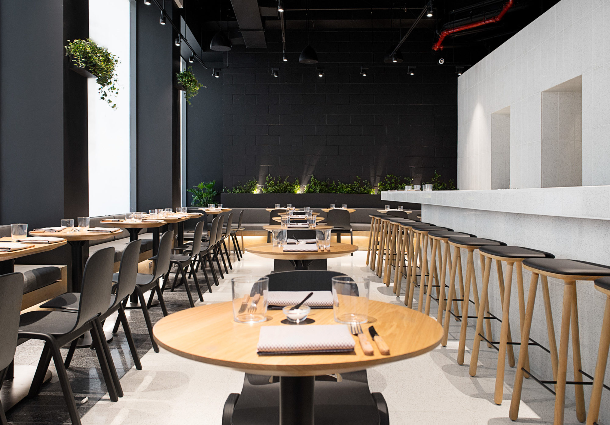 Mexico S Most Famous Chef Opens An All Day Cafe In New York Surface