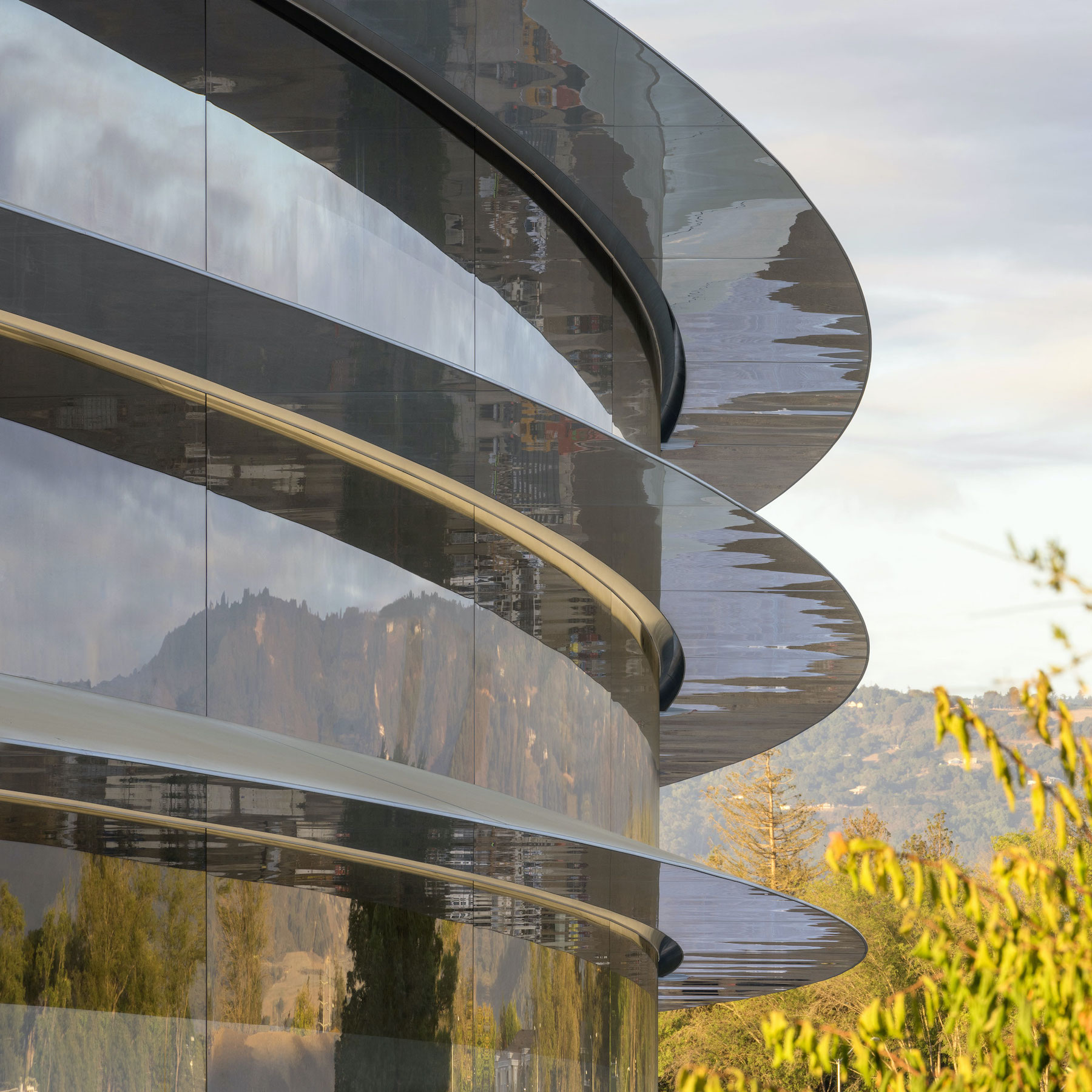 Apple Is Developing a Search Engine, LVMH Acquires Tiffany, and Other News – SURFACE